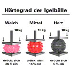 Igel-Ball, ø 6 cm, orange, mittel