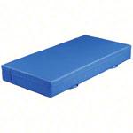 Turnmatten - Weichbodenmatte RG 20, 200x150x25 cm