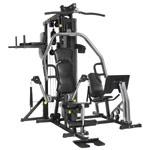 Ganzkörpertrainer - Horizon Fitness Kraftstation Torus 5