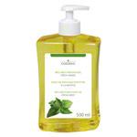 Massage - cosiMed Wellness-Massageöl Fresh-Minze mit Druckspender, 500 ml