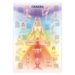 "anatomische Lehrtafeln - Mini-Poster ""Chakra"", LxB 34x24 cm"