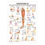 Mini-Poster Stretching III, LxB 34x24 cm