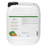 cosiMed Massagelotion Mango-Melone, 5 l
