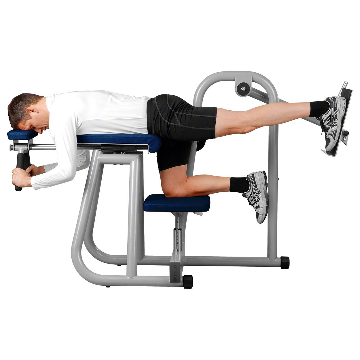 ERGO-FIT Hip Bench, Professionelles Fitnessstudiogerät, Bauch Beine Po Trainer Trainer Trainer 13a24d