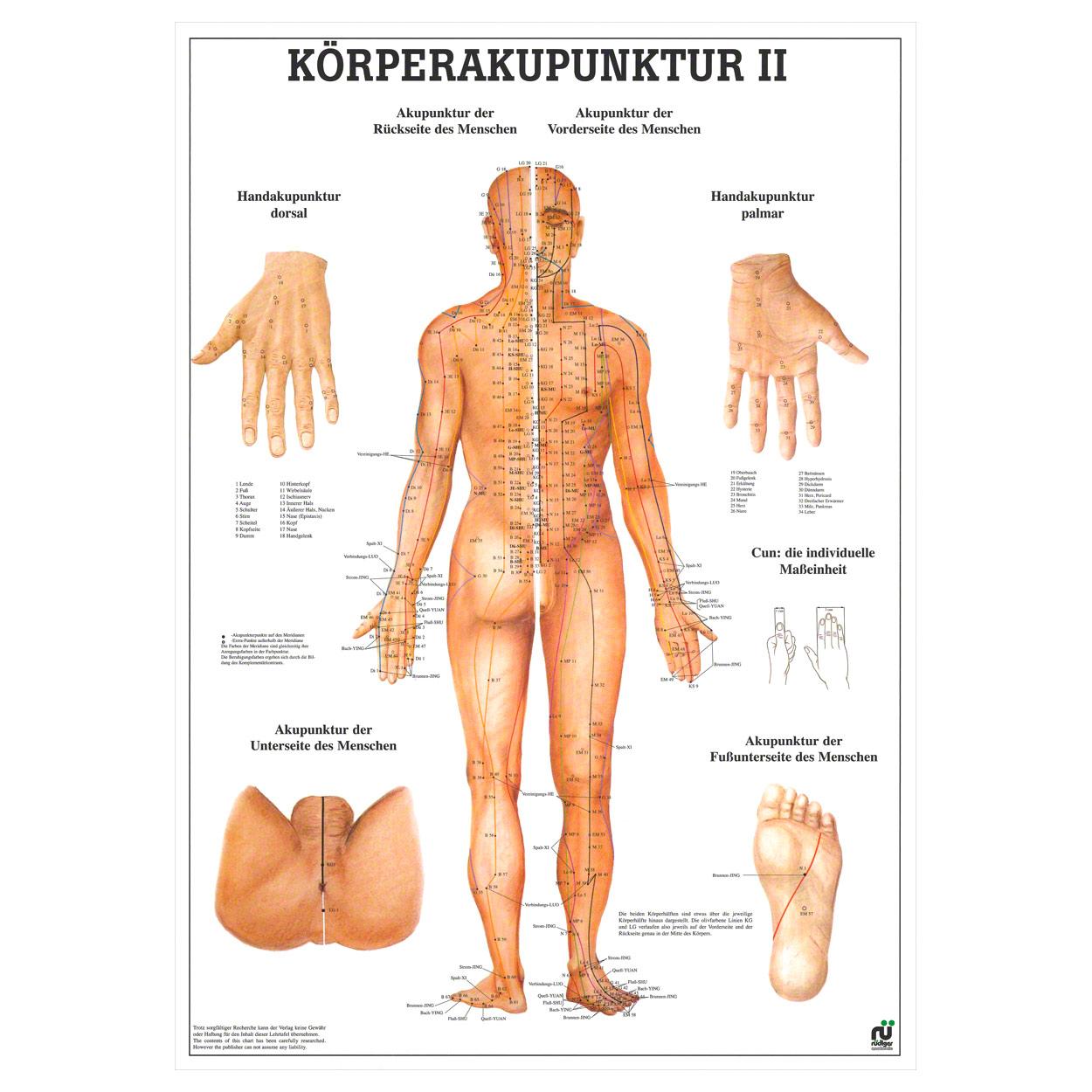 Körperakupunktur II Lehrtafel Anatomie 100x70 cm medizinische ...