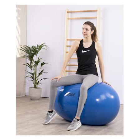 PEZZI Therapierolle Eggball, Ř 85 cm x 125 cm, blau 03446