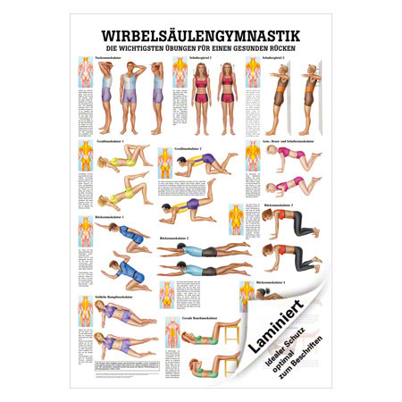 "Lehrtafel ""Wirbelsäulengymnastik"", LxB 100x70 cm 25076"