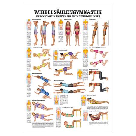 "Mini-Poster ""Wirbelsäulengymnastik"", LxB 34x24 cm 25078"