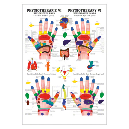 "Mini-Poster ""Reflexzonen Hand"", LxB 34x24 cm"