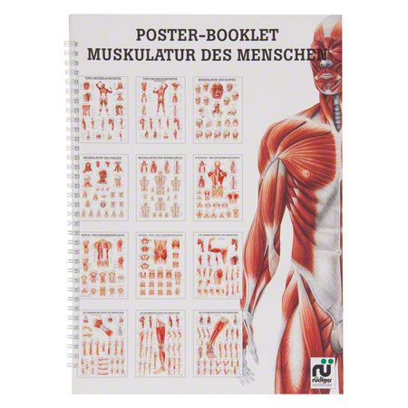 Mini-Poster Booklet