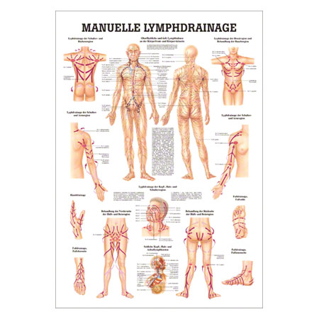 Mini-Poster Manuelle Lymphdrainage, LxB 34x24 cm